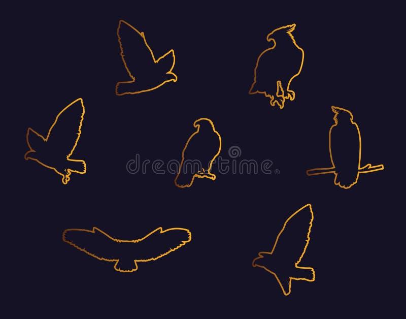 用不同的姿势的鹰鸟金黄剪影 皇族释放例证