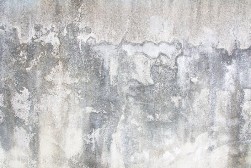 用不同的树荫的老白色墙壁 免版税库存照片