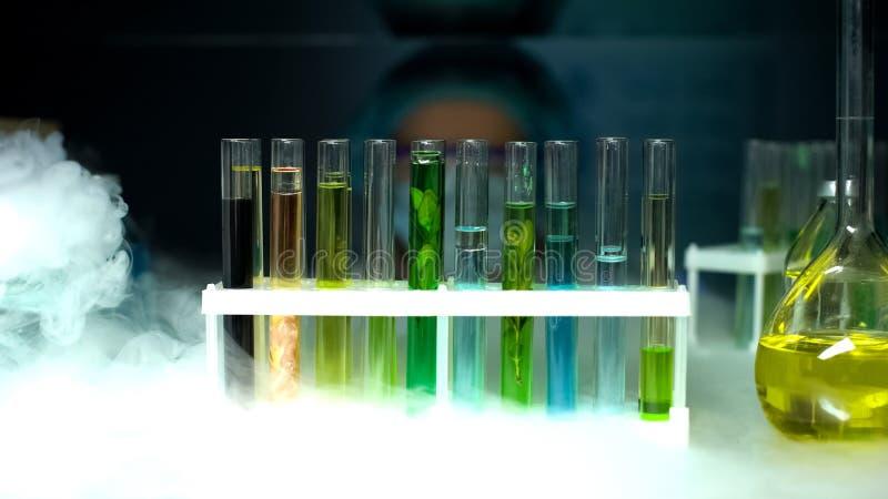 用不同的样品的管在冰箱,cosmetological产业,萃取物 库存图片