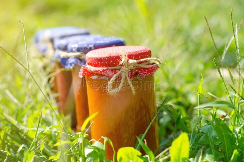 用不同的种类的玻璃瓶子果酱 免版税库存照片
