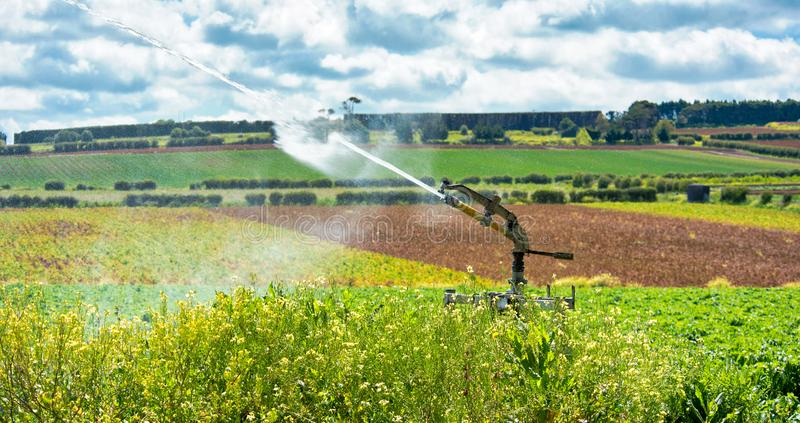 用于灌溉的高压水炮 库存照片