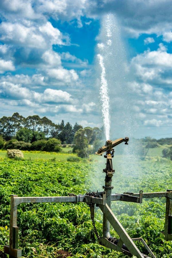 用于灌溉的高压水炮 库存图片