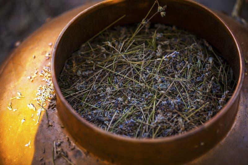 用于蒸馏的铜碗生产淡紫色精油 免版税库存图片