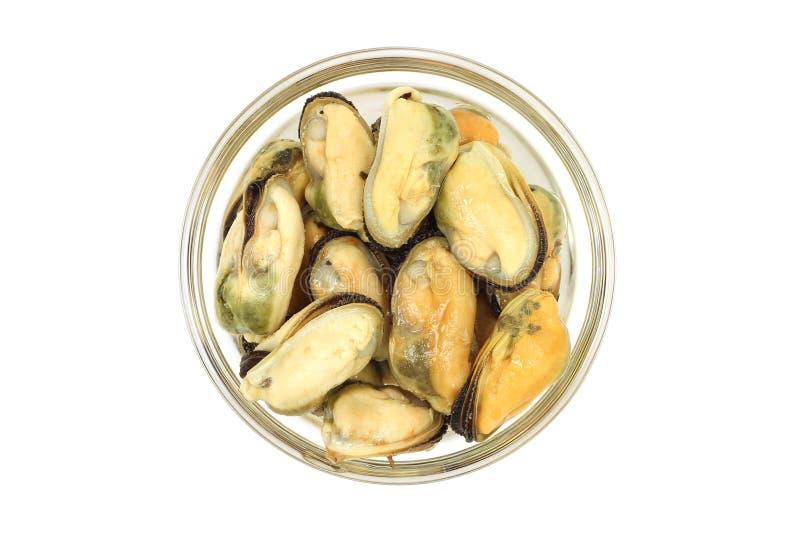 用卤汁泡的海淡菜的部分在一个玻璃杯子的 免版税库存照片