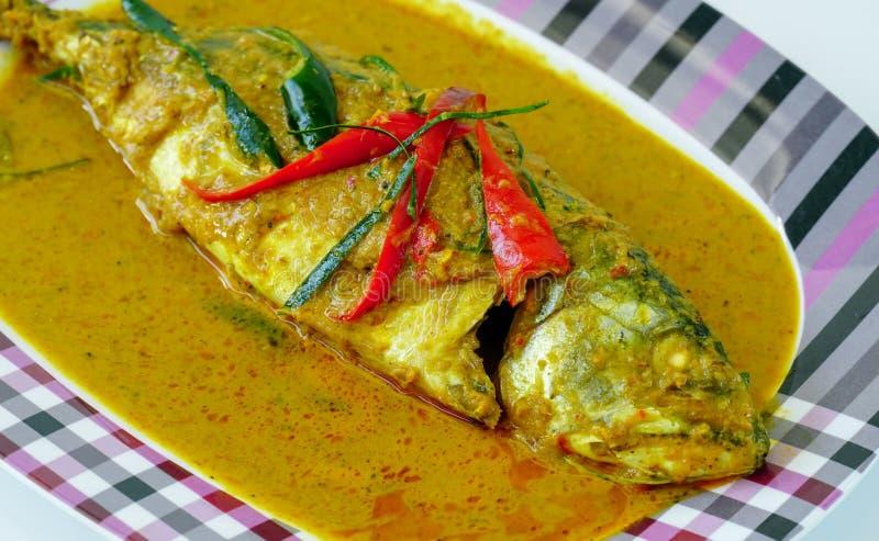 用咖哩粉调制样式泰国食物,在盘的chuchi鲭鱼 库存图片