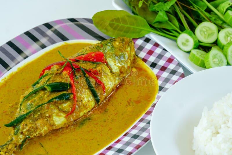 用咖哩粉调制样式泰国食物,在盘的chuchi鲭鱼 库存照片