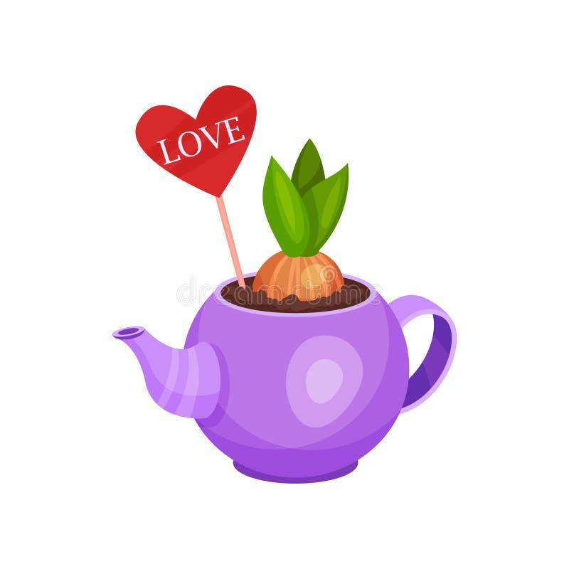 用在棍子的心脏装饰的发芽的风信花电灯泡在紫色水壶 开花植物 春天构成 平的传染媒介 皇族释放例证