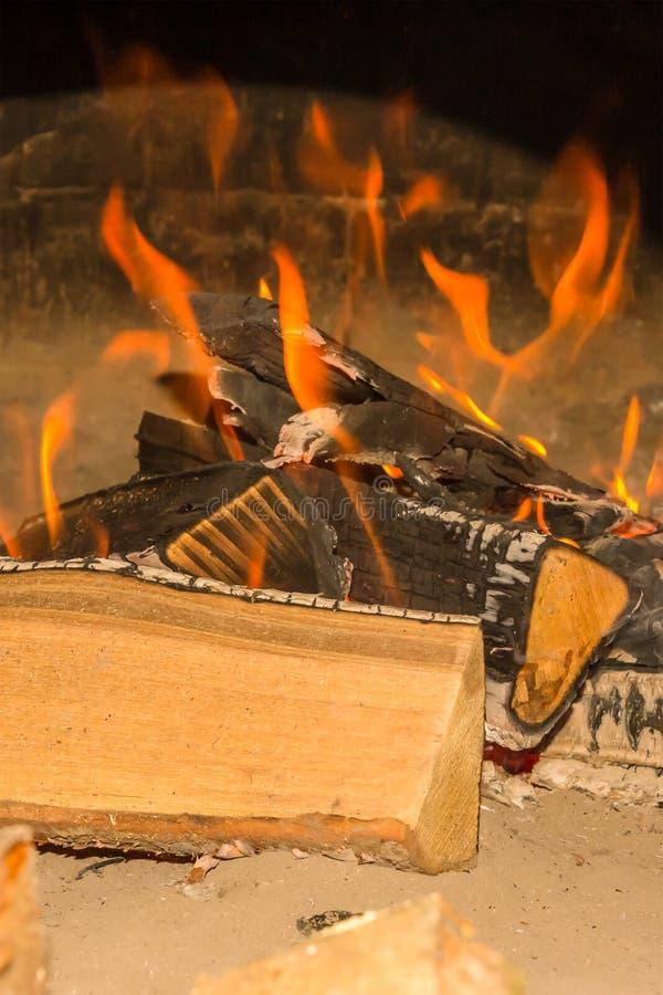 用在沙子特写镜头设计基地野餐的灰被烧盖的明亮篝火橙色火焰大日志在海洋岸 免版税库存图片
