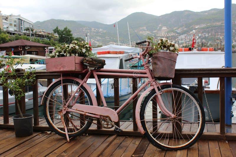 用在码头的花装饰的桃红色自行车 免版税图库摄影