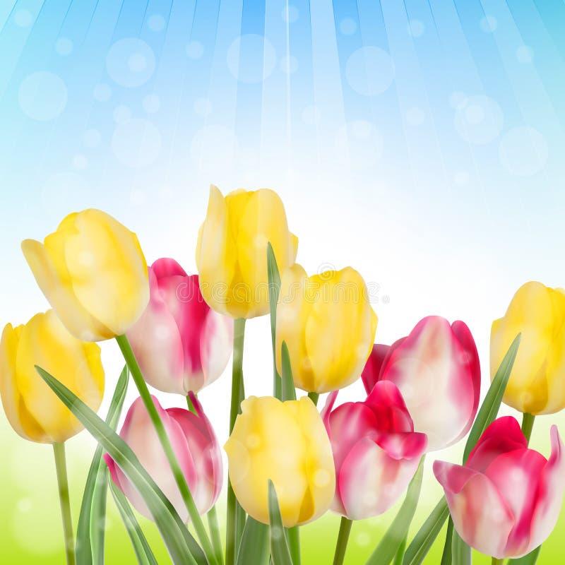 用在阳光下盖的野花。EPS 10 皇族释放例证