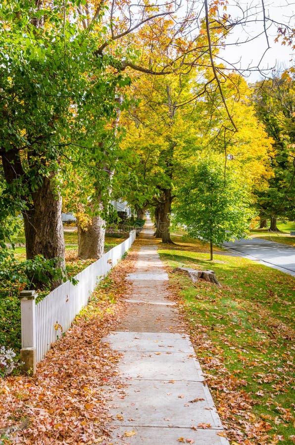 用堆盖的离开的木板走道下落的叶子在一晴朗的秋天天 库存图片