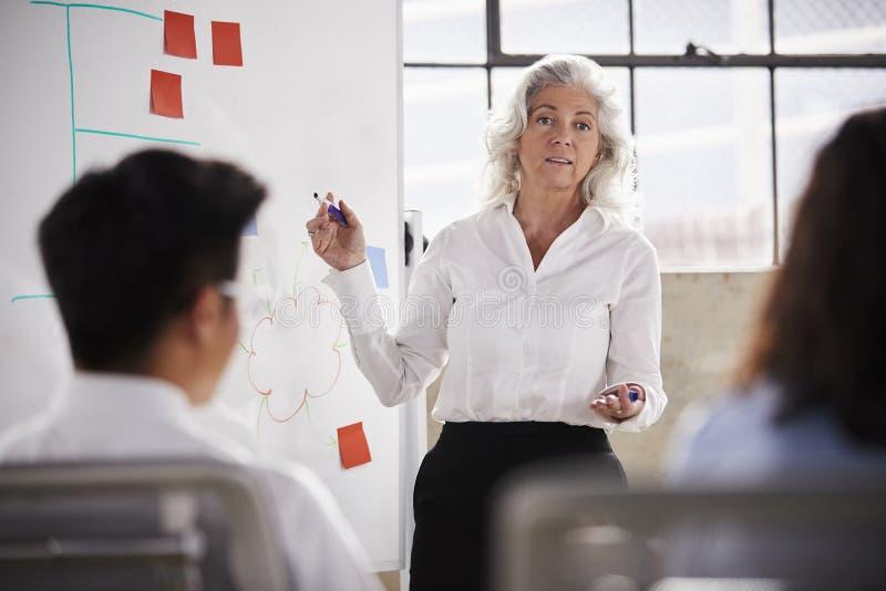 用完whiteboard的资深女实业家在会议,关闭 库存照片
