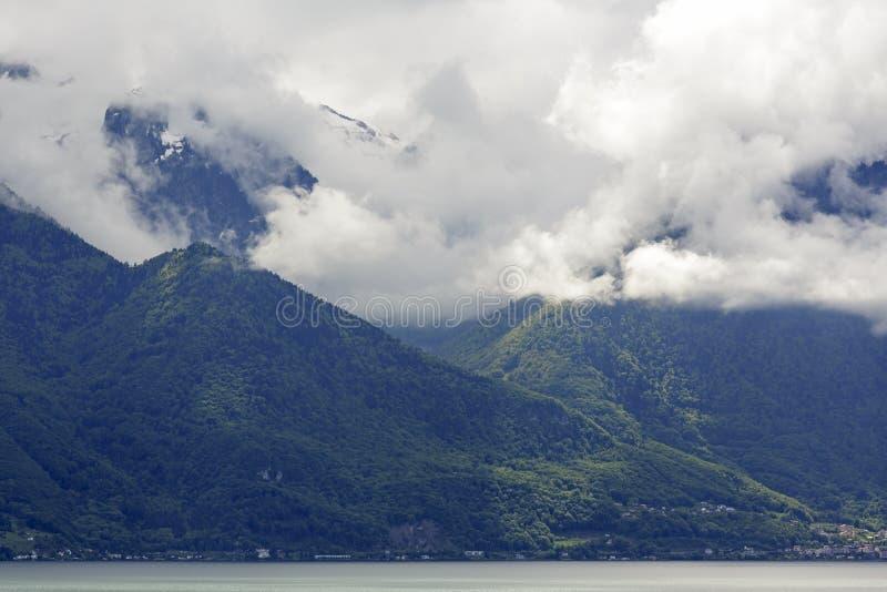 用密集的云彩盖的树木丛生的小山 库存图片