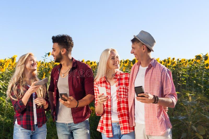 用巧妙的电话聊天的小组朋友室外乡下向日葵的人们调遣 免版税库存照片