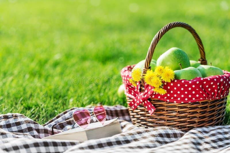 用方格的桌布盖的野餐桌 免版税库存照片