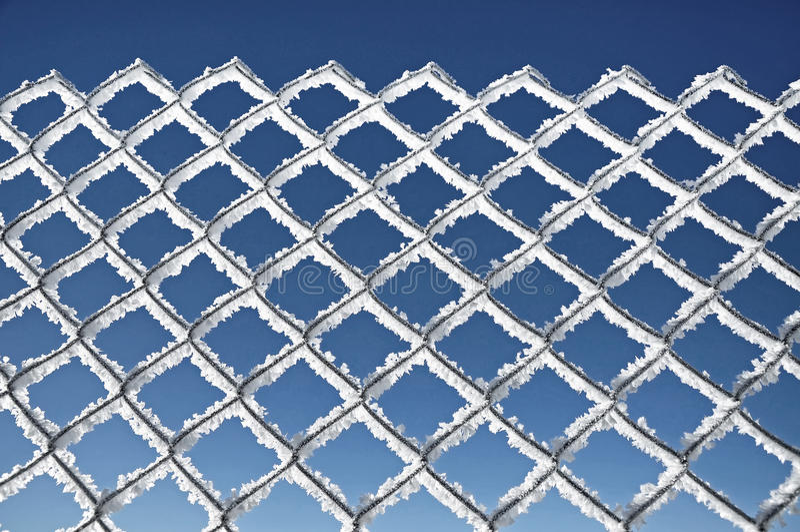 用树冰极端冷气候concep报道的金属网 库存图片