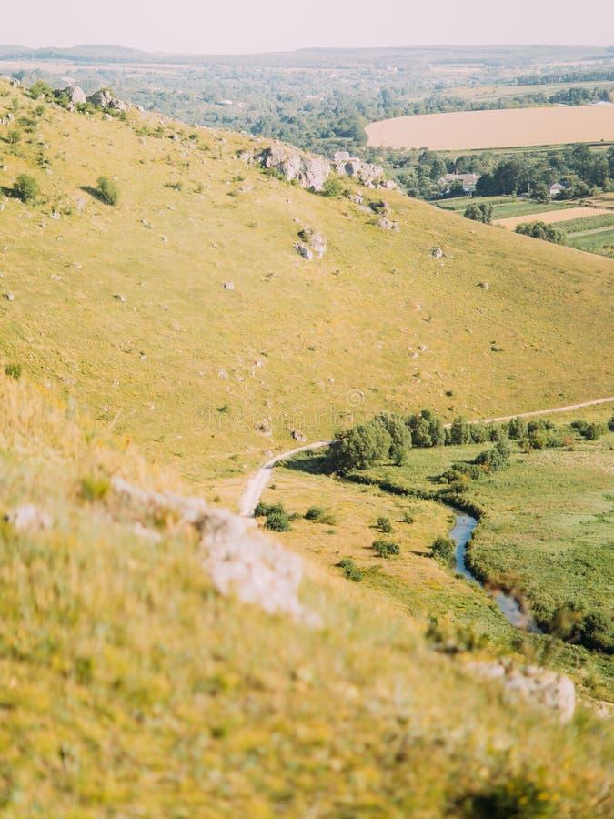 用树和山的盖的垂直的看法草甸 免版税库存照片