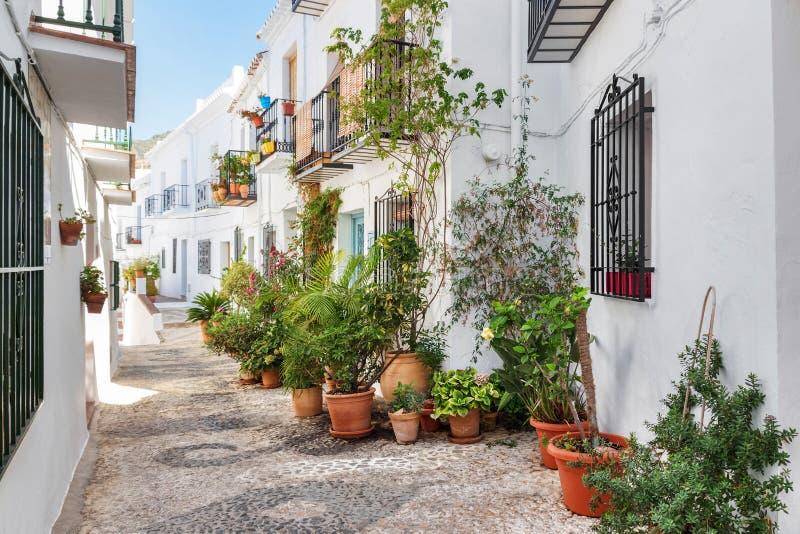 用植物装饰的美丽如画的狭窄的街道 免版税库存图片