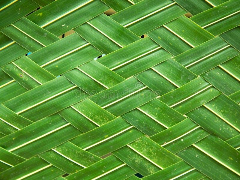 用椰子叶子做的柳条为装饰使用 免版税库存照片