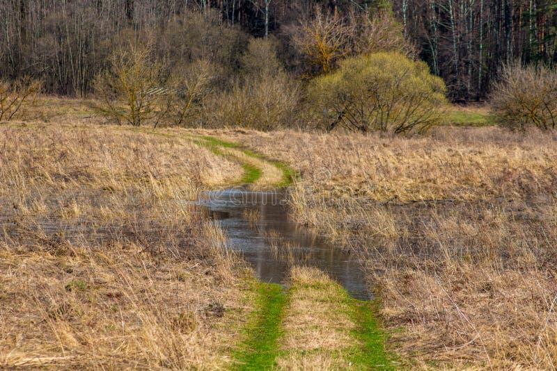 用水充斥的农村路 免版税库存图片