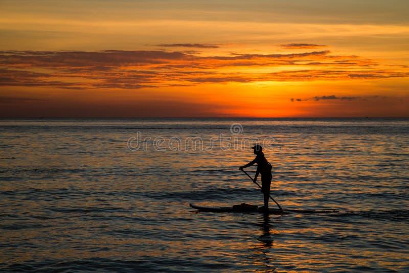用浆划在一口板的年轻人剪影在海在日落,背面图 库存图片
