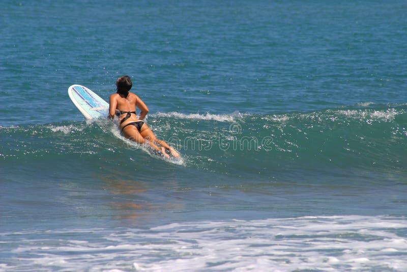用浆划rica冲浪板妇女的肋前缘 免版税库存图片
