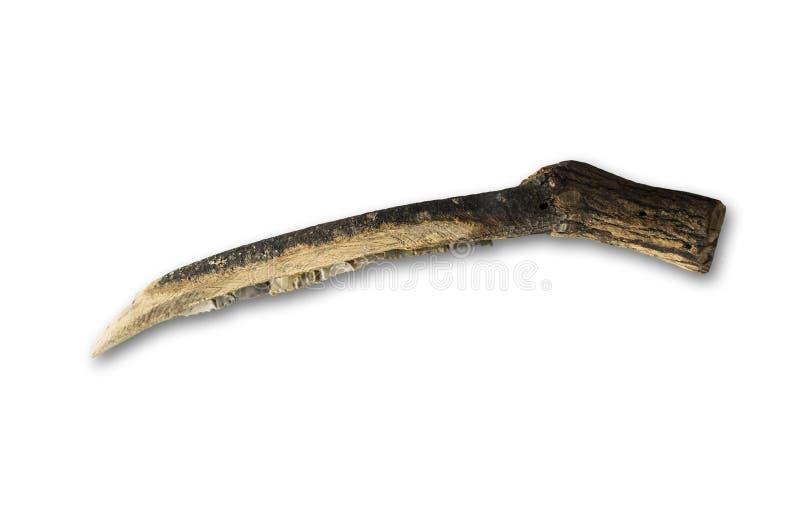 用石火石做的新石器时代的镰刀 史前农业石工具 库存照片
