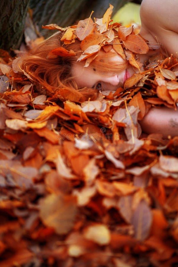 用红色和橙色秋季叶子盖的一个逗人喜爱的年轻可爱的女孩的画象 说谎在秋叶的美丽的性感的女孩 库存照片