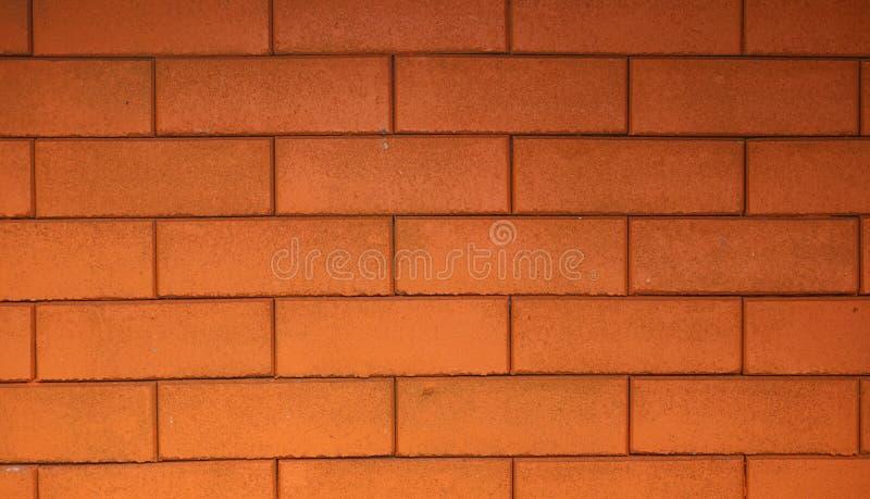 用美丽的大厦装饰的红砖墙壁 库存照片
