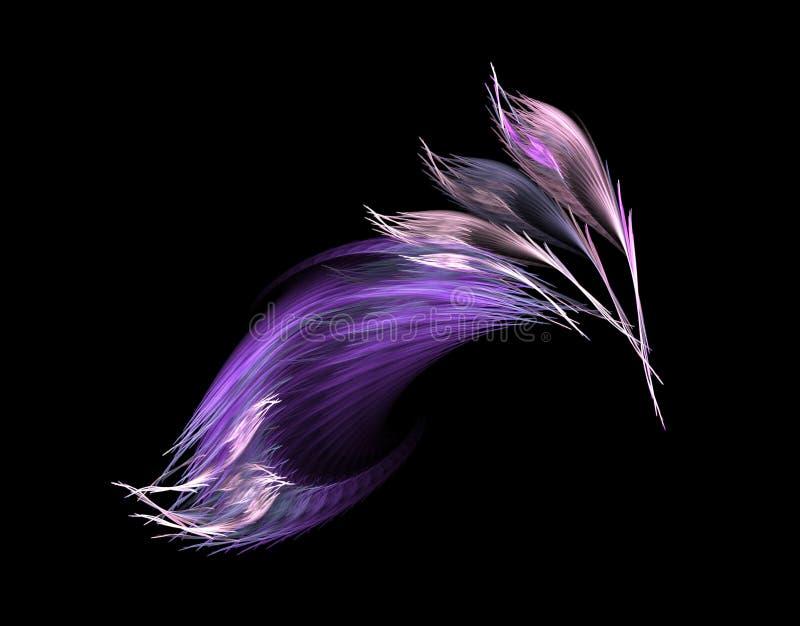 用羽毛装饰紫罗兰 库存照片