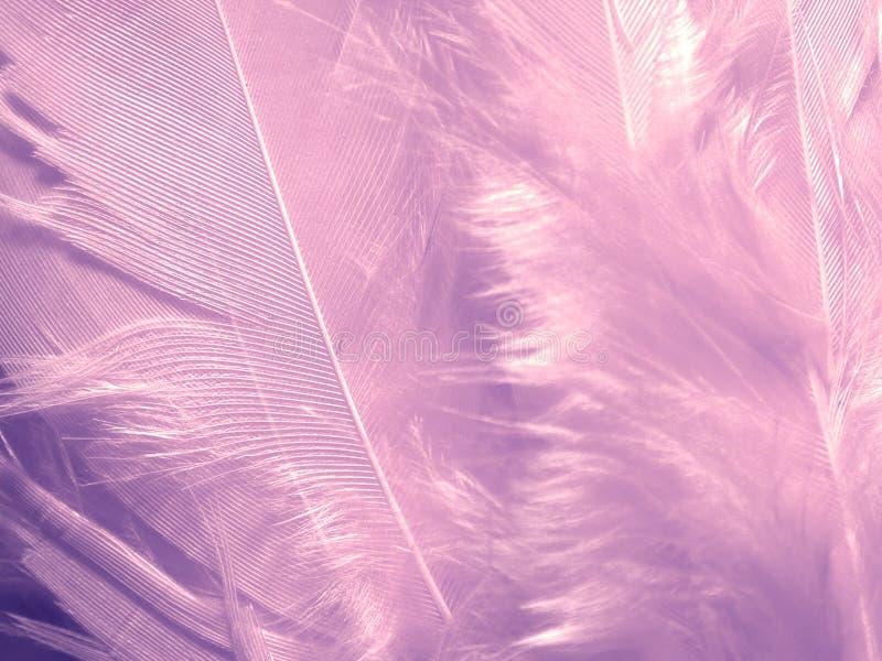 用羽毛装饰紫色虚拟纹理 免版税库存照片