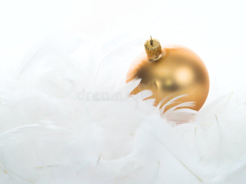 用羽毛装饰金装饰品 免版税图库摄影