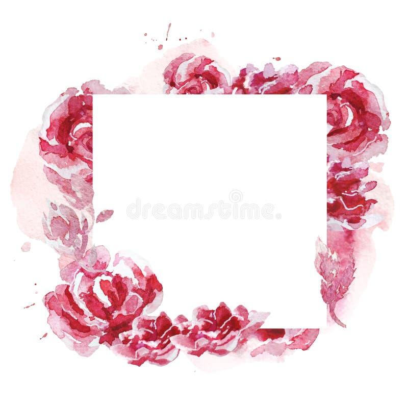 用花卉和植物元素做的手拉的艺术性的水彩框架被隔绝在白色背景 向量例证