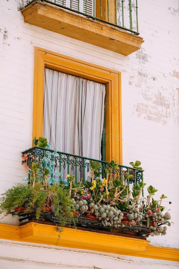 用花装饰的一个老房子的窗口 免版税库存图片