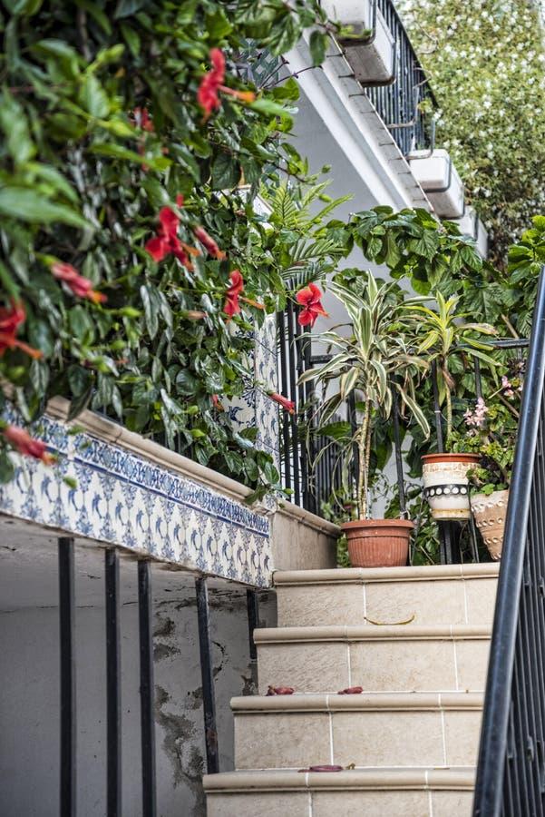 用花装饰的楼梯t在马尔韦利亚在西班牙 库存照片