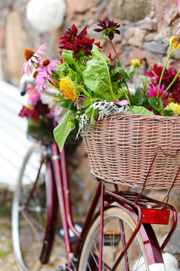 用花装饰的葡萄酒自行车 库存图片