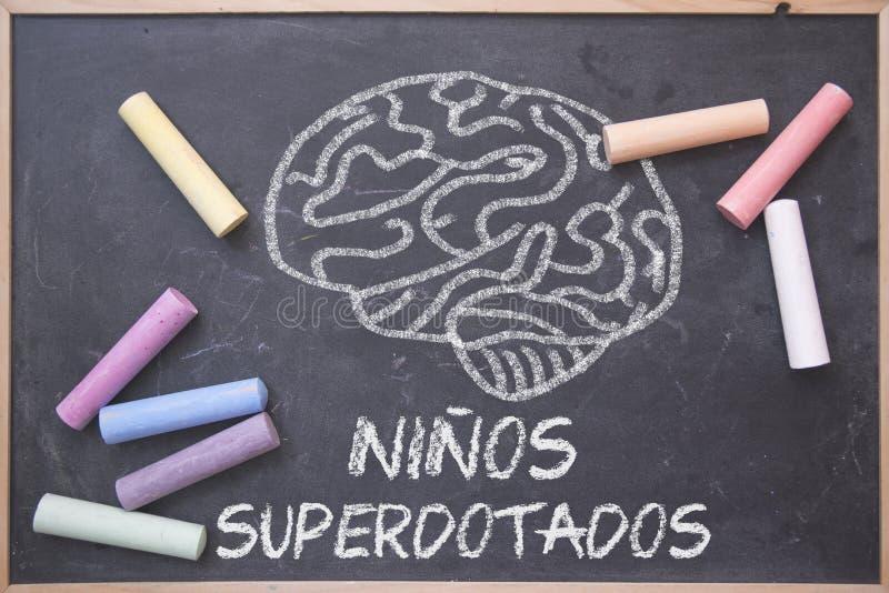 用西班牙语和教育概念写的天才儿童词在一个黑板在教室 脑子图画和色的白垩 免版税库存图片