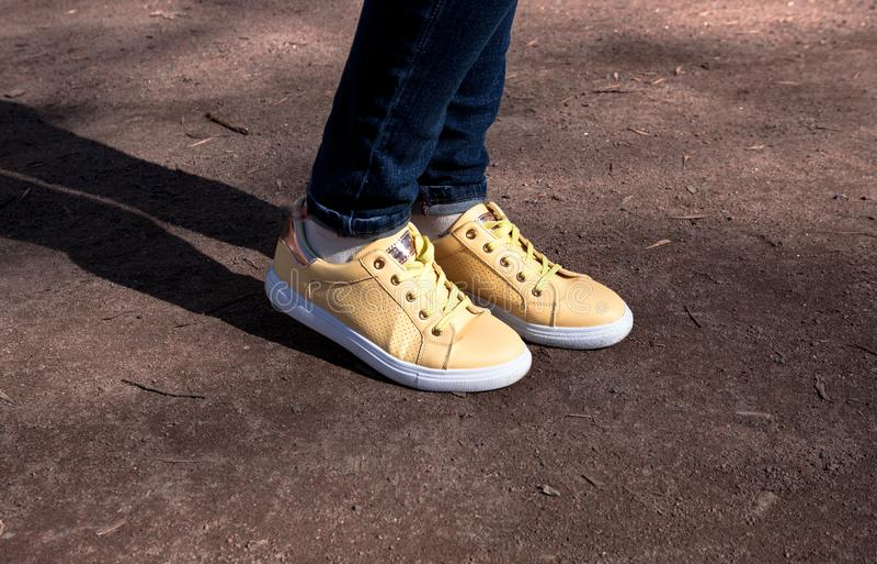 用雏菊装饰的黄色运动鞋在公园 图库摄影