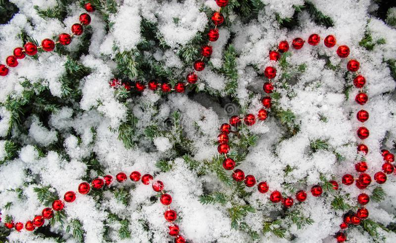 用雪和红色小珠报道的许多针叶树树枝纹理  从小珠的心形 库存图片