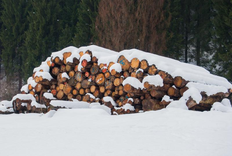 用雪堆积和盖的长和未加工的日志 库存图片