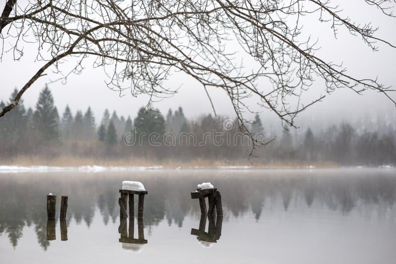 用雪盖的腐朽的码头在湖 库存照片