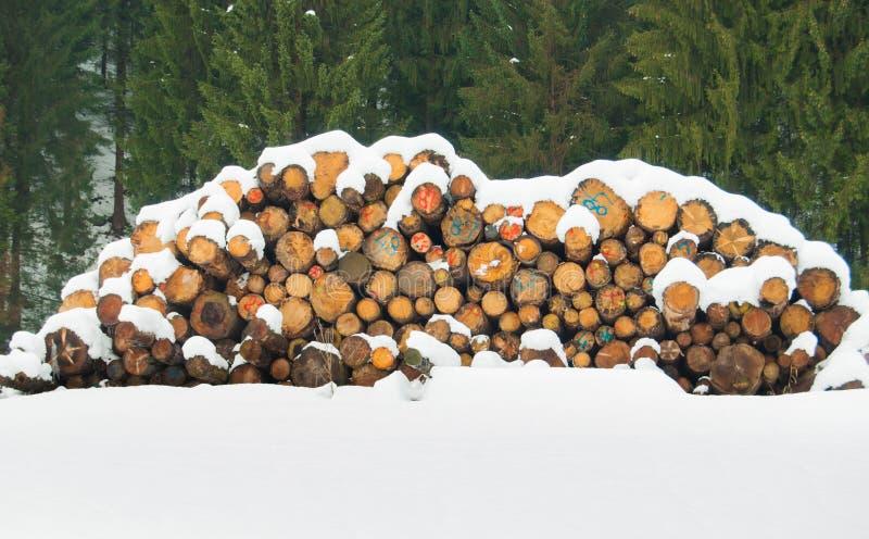 用雪盖的被堆积的日志 免版税库存照片