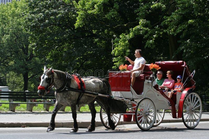 用马拉的支架乘驾在中央公园 免版税库存照片