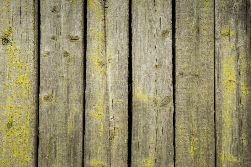 用绿色青苔盖的老被风化的木板条 免版税图库摄影