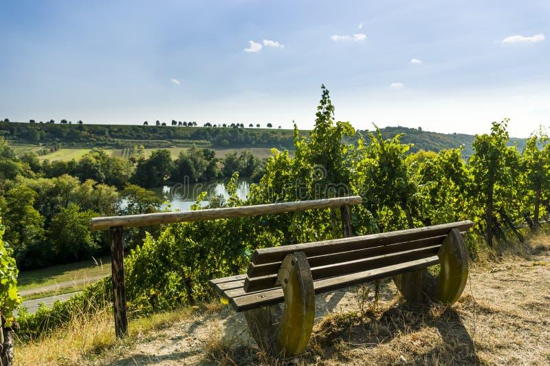田园诗休息处在河主要的谷的葡萄园里,在背景中有城堡的Vogelsburg一个葡萄园 图库摄影