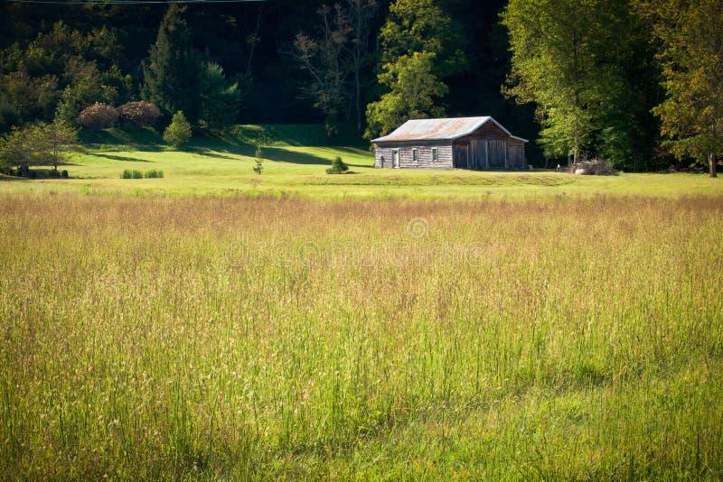田园诗农厂房子和野花草甸在早晨 免版税库存图片