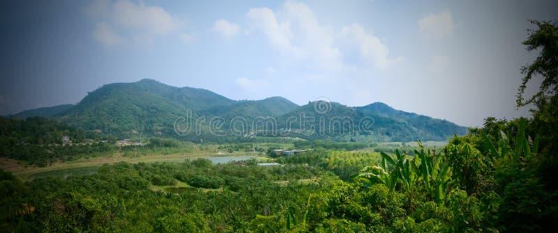 田园诗夏天风景全景在清楚的山湖和新鲜的绿色山的吃草森林 库存图片