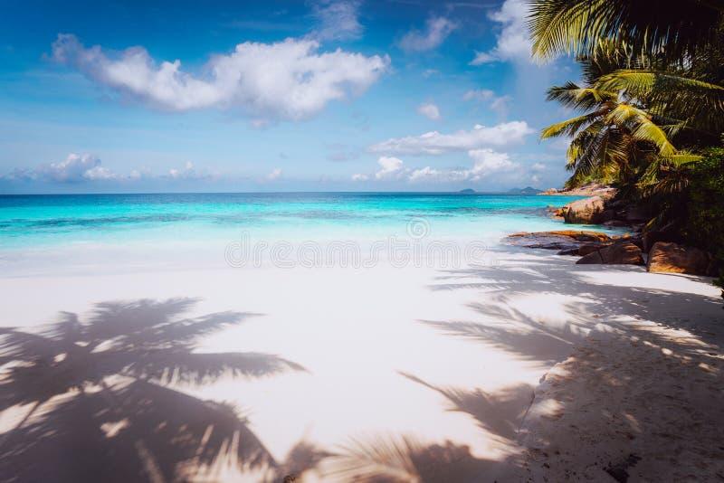田园诗完善的热带梦想海滩 粉状白色沙子,透明的水,夏令时假期塞舌尔 库存图片