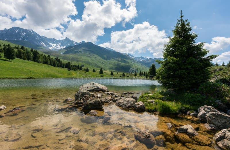 田园诗山湖风景在瑞士阿尔卑斯临近阿尔卑斯弗利克斯 免版税库存图片