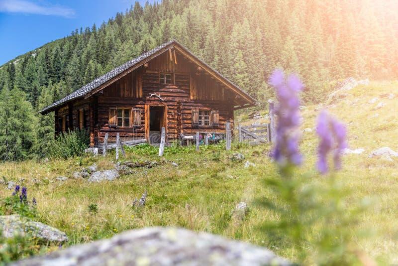田园诗山风景在阿尔卑斯:山瑞士山中的牧人小屋、草甸和天空蔚蓝 免版税库存图片